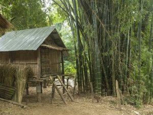bambusstige